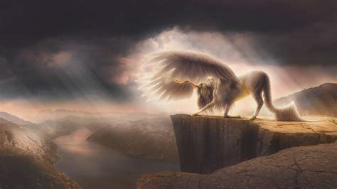 fantasy pegasus horse  wallpapers hd wallpapers id
