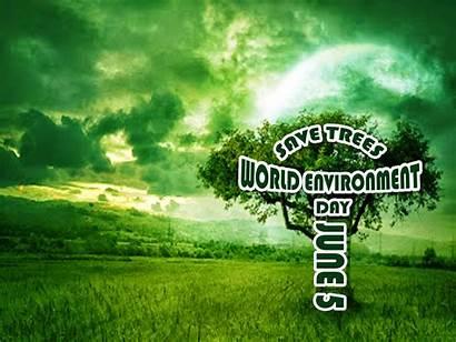 Environment Trees Save Environmental Wallpapers Desktop Px