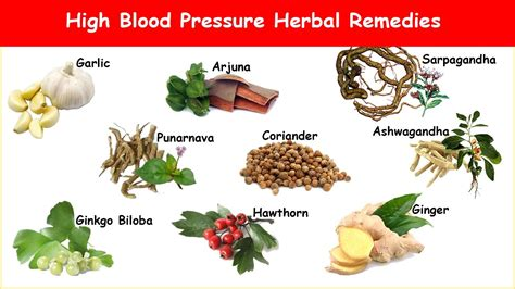 9 High Blood Pressure Herbs to Normalize Hypertension ...