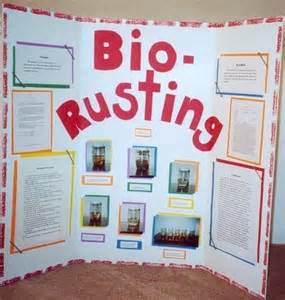10th Grade Science Fair Projects Ideas