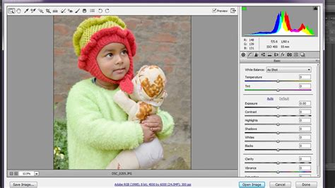 install camera raw plugin  photoshop cs