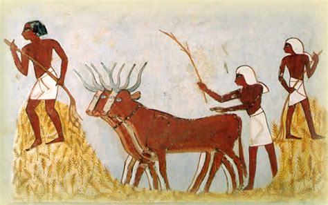 ancienne cuisine histoire de l alimentation egypte ancienne céline m céline aime