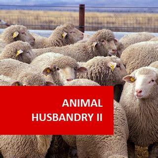 animal husbandry ii animal health   pet care