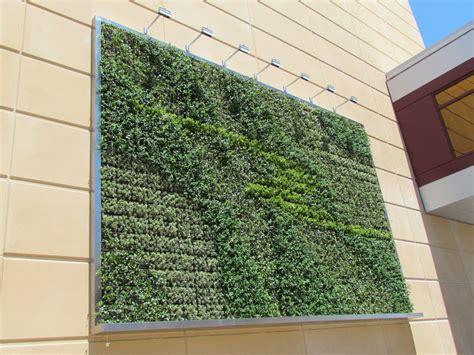 vertical gardens  wallpaper   future  alive