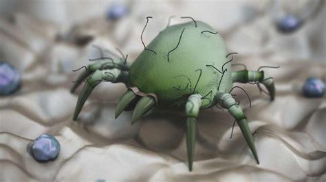 rid  dust mites  chemicals