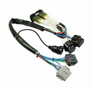 Aem Plug  U0026 Play Powersport F  Ic