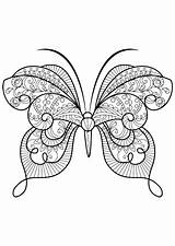 Coloring Butterfly Pages Adult Butterflies Adults Advanced Zentangle Insects Printable Books Insect Butterflys Patterns Mandala Issuu Animals Drawing Mandalas Animal sketch template
