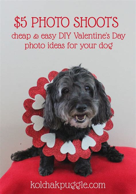 valentines photography ideas images  pinterest