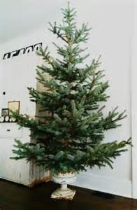 1000 ideas about artificial christmas tree stand on pinterest rotating christmas tree stand