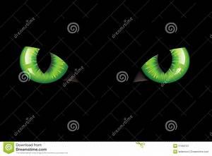 Cats Eyes. Vector stock vector. Illustration of attack ...