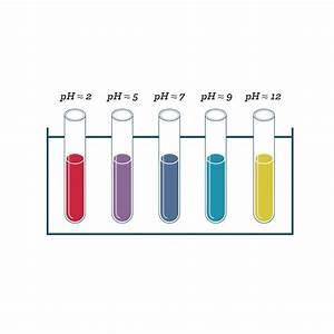Ph Du Sol : couleurs et arts fiche de cours sciences schoolmouv ~ Melissatoandfro.com Idées de Décoration