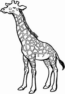 free printable giraffe coloring pages for kids With giraffe diagram