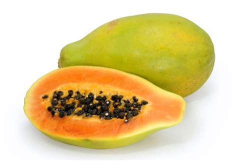 cuisiner la papaye guide nutrition la papaye carica papaya informations