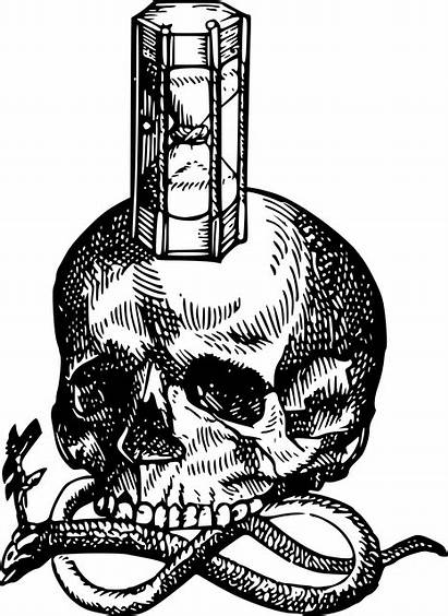 Skull Hourglass Snake Clipart Medieval Drawing Mori
