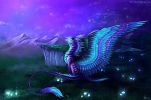 Messages from The Dragons | Ascension 360º - Navigating ...
