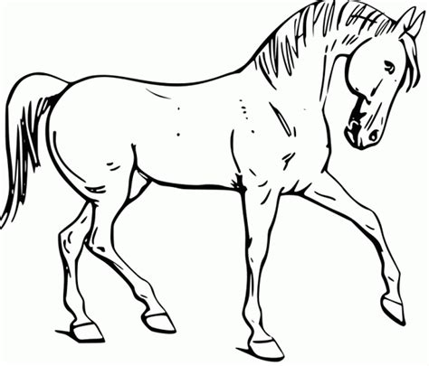 mustang horse coloring pages printable  getcoloringscom  printable colorings pages
