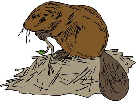 Beaver Clip Beavers Clip