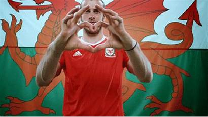 Wales David Happy Poems Quotes Gifs Bale