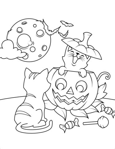 halloween cats  jack olantern coloring page