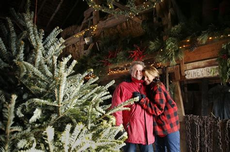 another christmas tradition gone as ohio tree farm closes