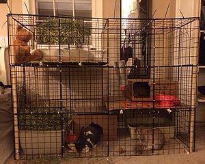 wire crate housing wabbitwiki