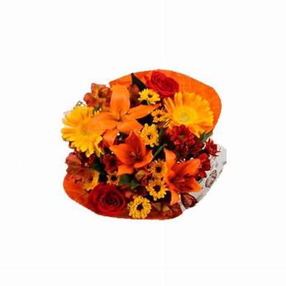 Bouquets Alstroemerias Thanksgiving Gerberas Indian Globalrose Arrangements