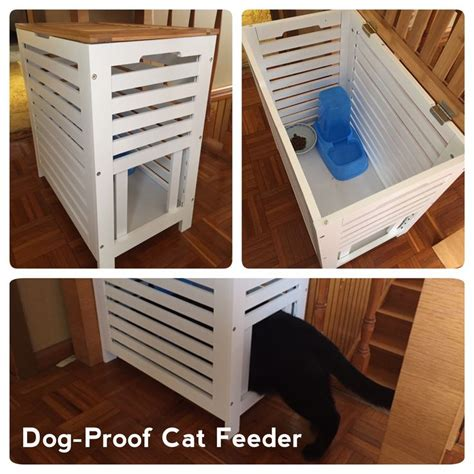 proof cat feeder 14 best tiger images on cat cat supplies
