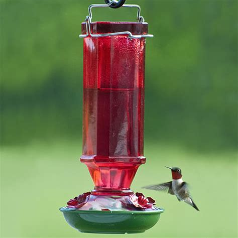 duncraft com 16 oz red glass hummingbird feeder