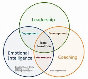 Leadershipeicoachingvenn