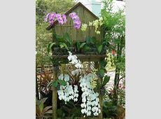 Putrajaya Floria 2019 Royal Floria Putrajaya Flower