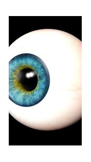 3D Realistic Eyes Collection by s_i_S_c_o   3DOcean