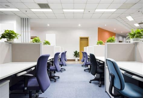 plante verte bureau am 233 nagement de plantes d int 233 rieur pour le bureau de travail