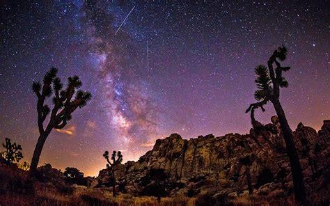 Milky Way Sky Over Joshua Trees In The Desert Hd Wallpaper
