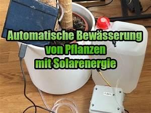 Pflanzen Automatisch Bewässern : pflanzen automatisch bew ssern mit arduino youtube ~ Frokenaadalensverden.com Haus und Dekorationen