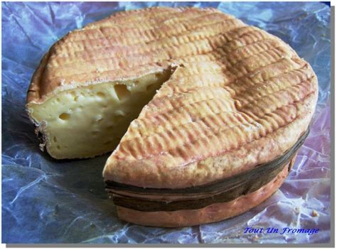 pate molle a croute lavee pin by eriko on fromage ふろまーじゅ