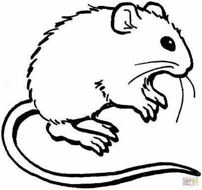 Ausmalbilder Mouse Coloring