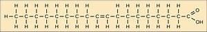 3 3 Lipids