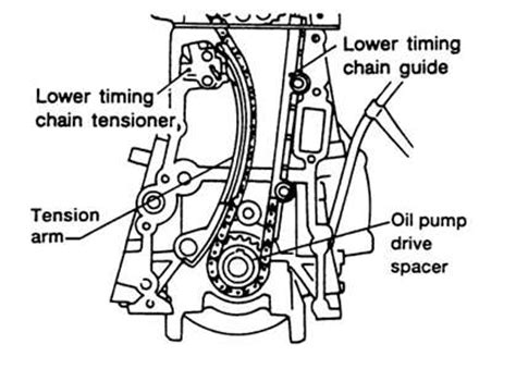 solved i m looking for a diagram of the timing chain fixya
