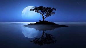 Deep Calming Music Under Full Moon Peaceful Night ...