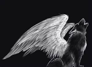 Pics For > Wolf With Wings Drawing | wolves | Pinterest ...