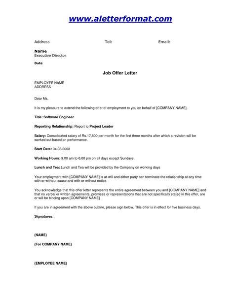 job offer letter templates ledger paper