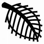 Skeleton Leaf Icon Svg Icons Transparent Freeiconspng