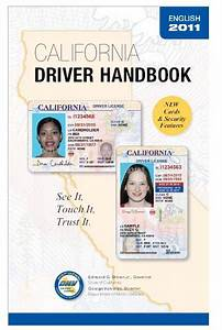 Driving Permit In Florida