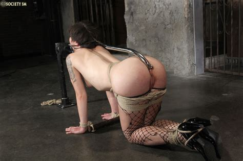 Device Bondage Anal Quality Porn Comments 4