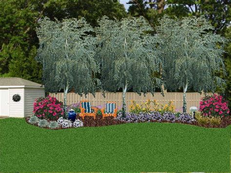 privacy landscaping ideas landscaping against a privacy fence three river birches i think it adds more privacy and i m