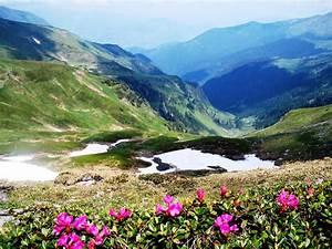 Amazing, Romania, Carpathian, Mountains