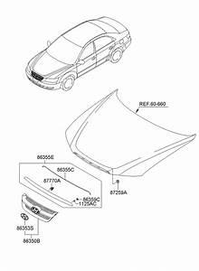Hyundai Sonata Bolt  Oct  Trim  Jan  Hybrid