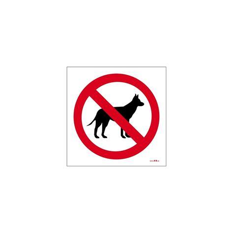 metal box prohibido el paso a perros ahb