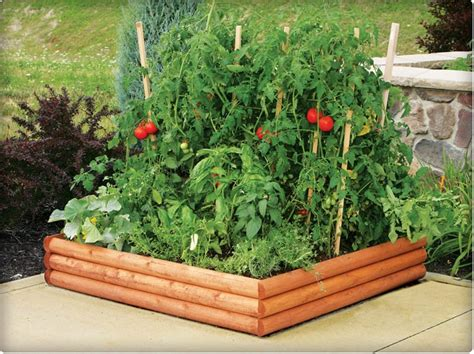 a raised bed for vegetables raised garden beds how to build and install them
