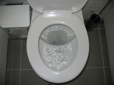 Why Won't My Toilet Flush?  Reasons Your Toilet Isn't